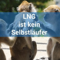 LNG ist kein Selbstläufer